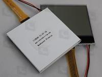 NHD-C160100DIZ-FSW-FBW  Дисплей графический FSTN позитивный,...